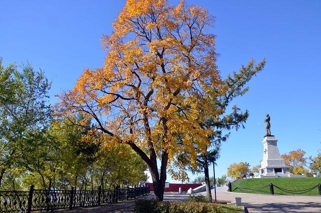ムラヴィヨフ・アムールスキー公園